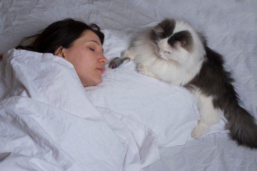 Evcil Hayvanlarınızın Sizinle Uyumasına İzin Vermeyin