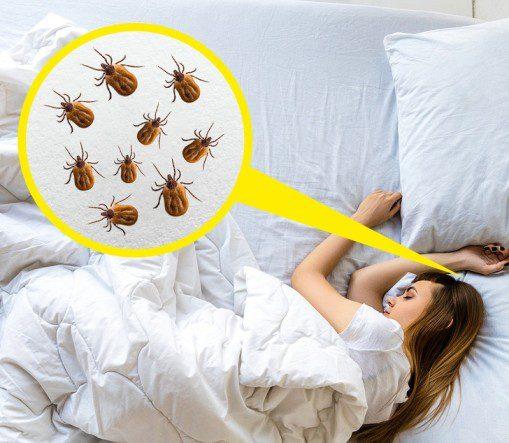 Yastığınızı Sık Sık Değiştirin